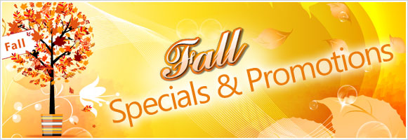 Fall Cleaning Specials