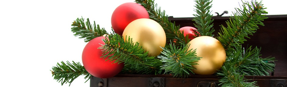 Christmas Bonus Specials Running Now!