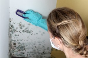 How To Clean Mold With Non-toxic Household Products